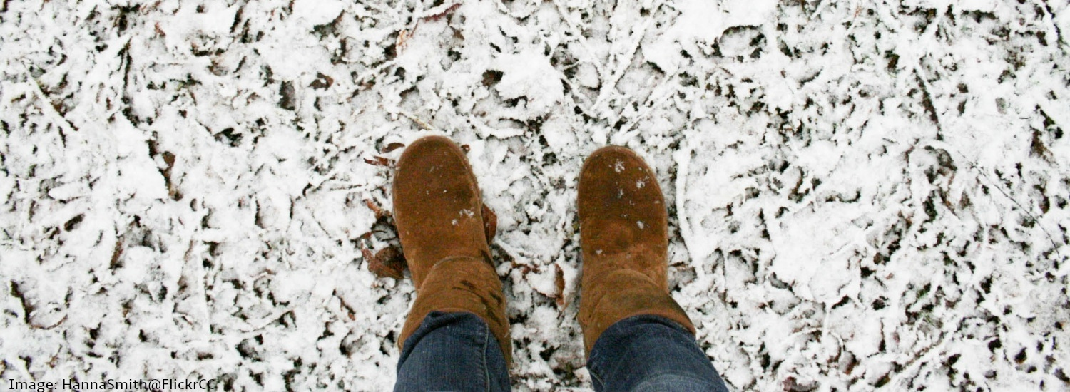 a0c83b4f69c75 Fake Uggs to counterfeit North Face  winter brands at high risk of  counterfeiting
